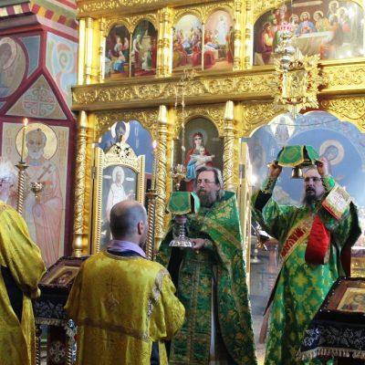 Праздничная Божественная литургия в Вербное воскресенье – 12 апреля 2020 г.